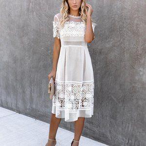 NWT Endless Rose Mesh Lace dress